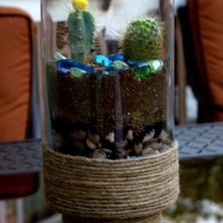 cactus terrarium, fix a broken glass vase