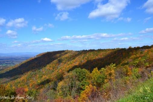 Oh Beautiful Virginia!