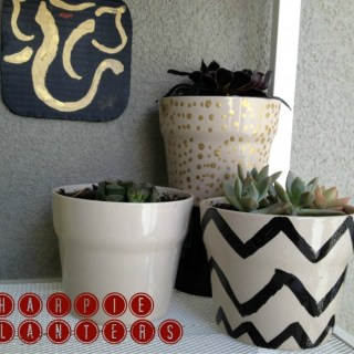 IKEA planter hack, sharpie planters