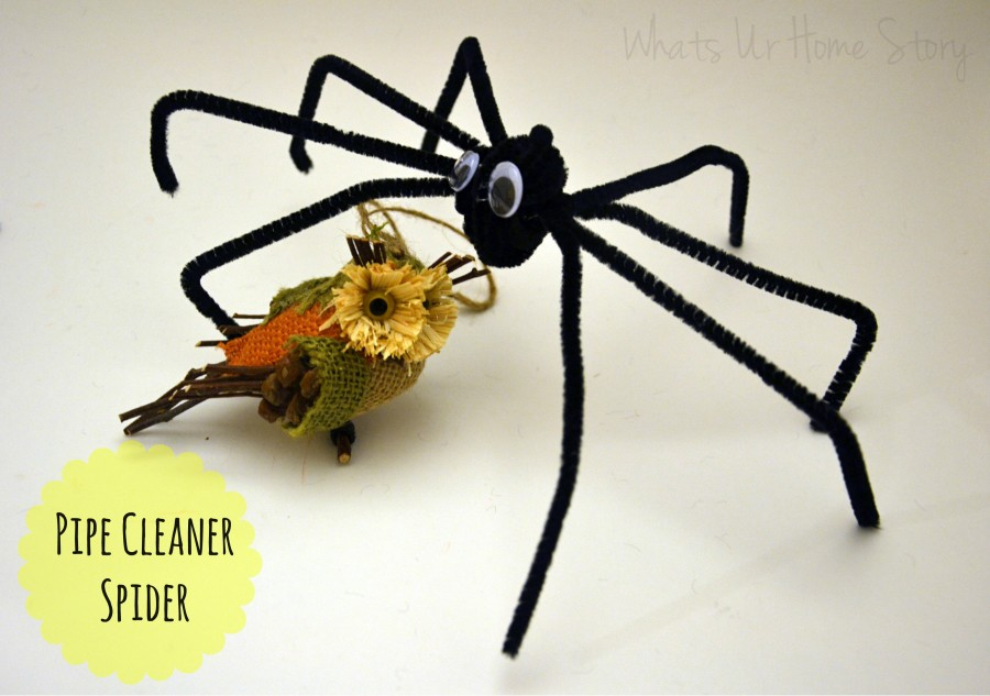 Pipe Cleaner Spiders Whats Ur Home Story