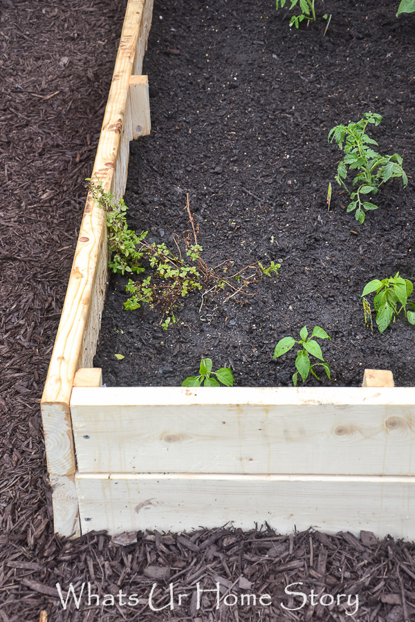 DIY Raised Garden Bed