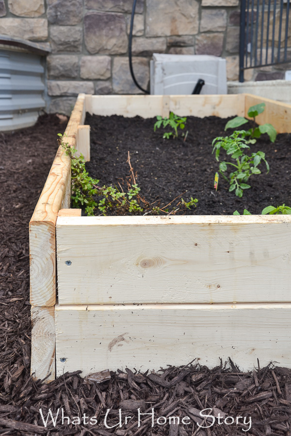 9 Tips to Kick start Your Spring Garden