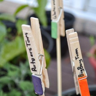 diy plant markers with clothespins