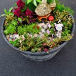 How To Make A Fairy Garden Whats Ur Home Story
