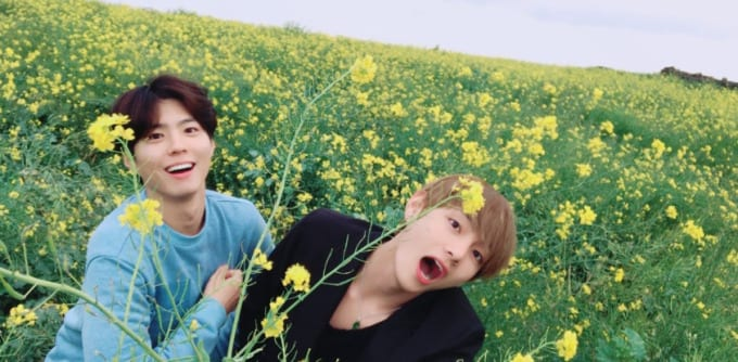 bts s v and actor park bo gum share cute pictures of jeju trip wtk