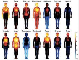 Temperature of emotional states