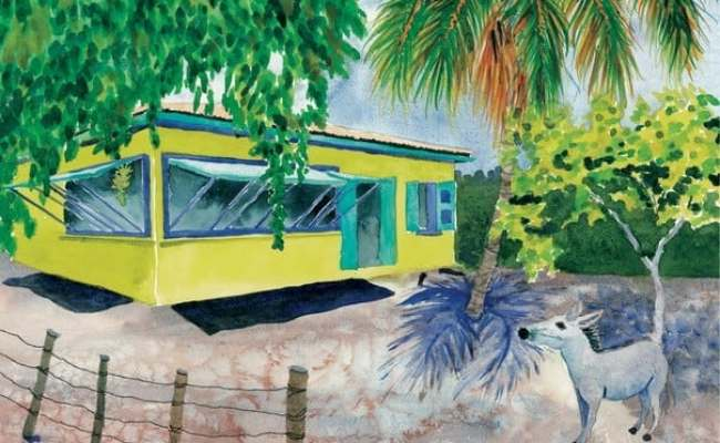 Virgin Island Tiny Home Whattodo Vi