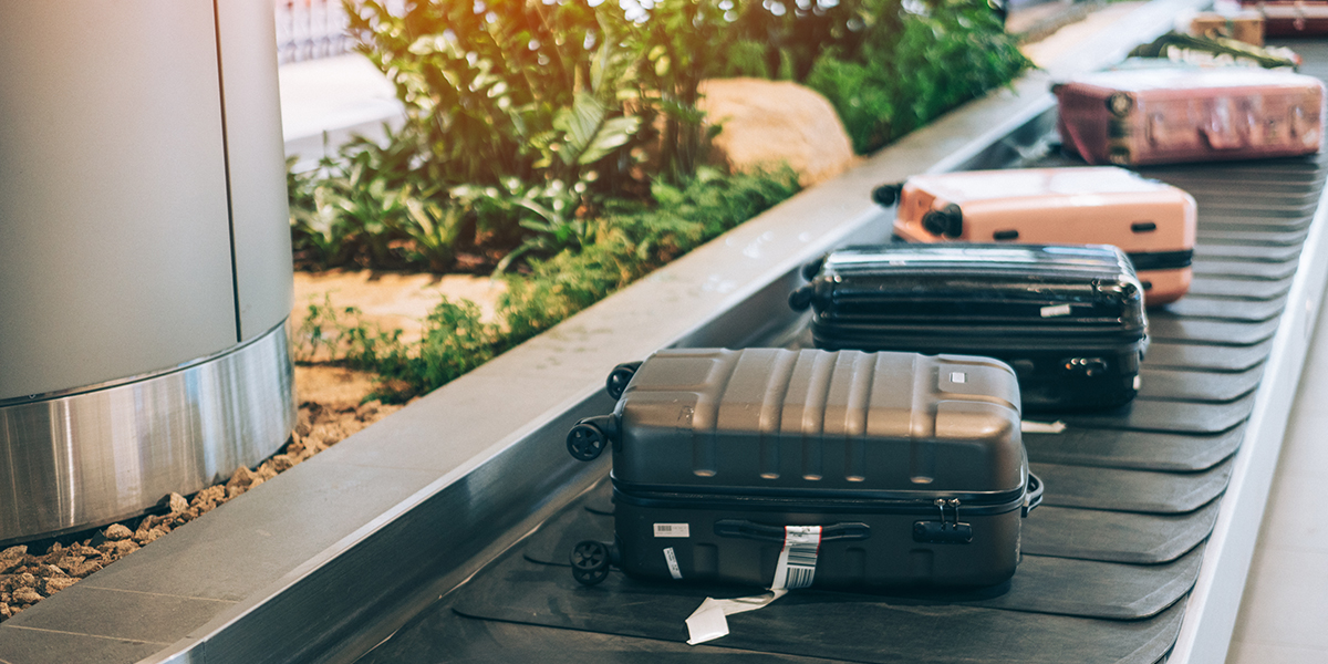 bag exterior - baggage carousel