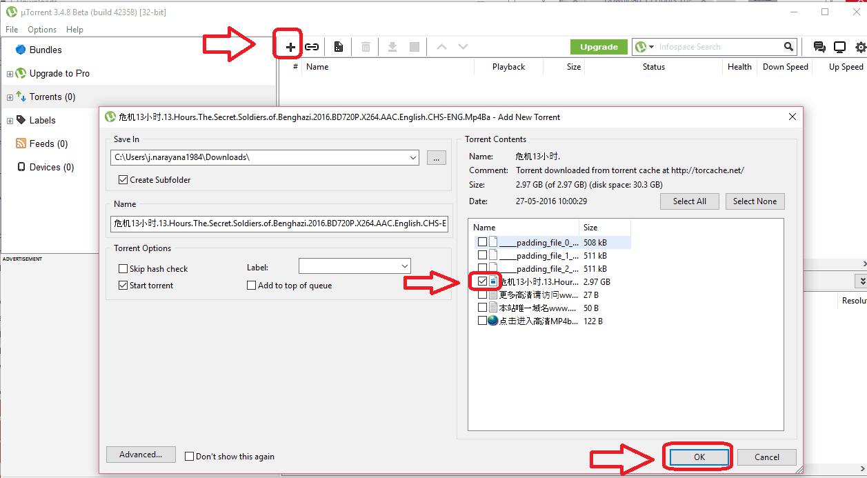 download movie with torren client