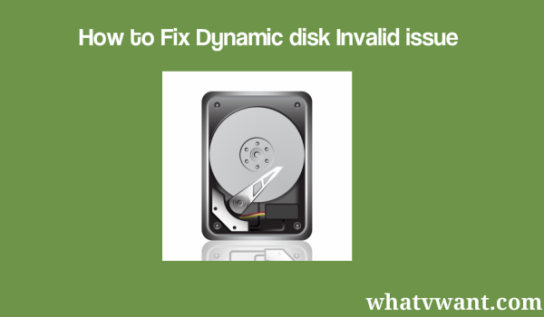dynamic-disk-invalid-issue