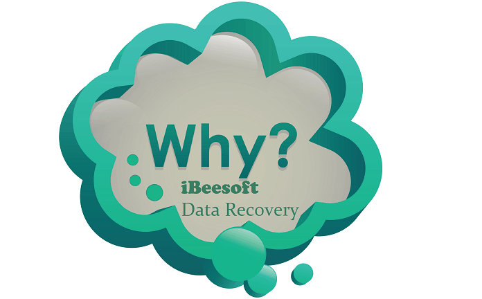 Use iBeesoft data recovery