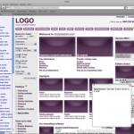 Screenshot of a website prototype