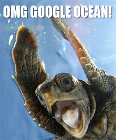 Google Ocean has been released, first commercial layers on their way!
