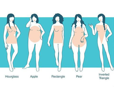 376d8a45ca Body Type Chart. Hourglass– The hips and bust are almost equal size with  narrow waist.