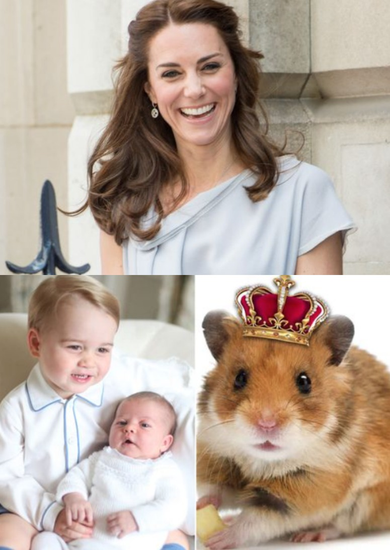 Kate Middleton Princess Charlotte Prince George Royal Hamster