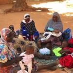 Nutri.Niger 23