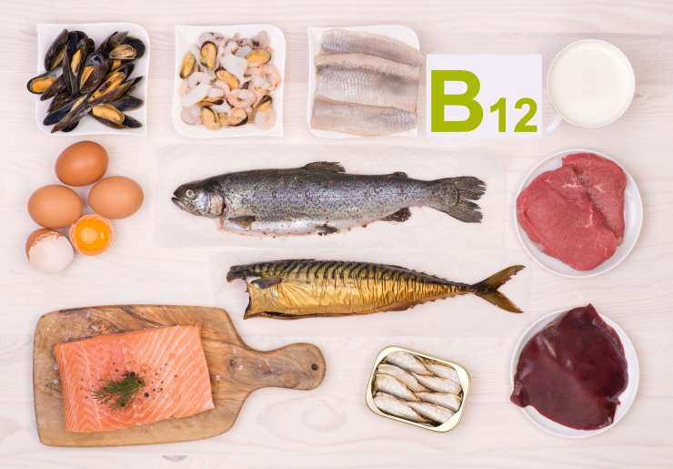 Vitamin B12 containing foods