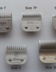 Clipper blades only also wheaten terrier grooming equipment rh wheatenhealthinitiative