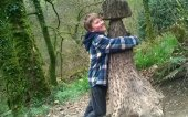 The money tree stump at Lydford Gorge, a National Trust property near Wheatland Farm's Devon eco lodges