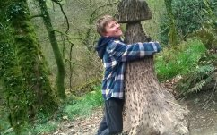 The money tree stump at Lydford Gorge, a National Trust property near Wheatland Farm's Devon eco lodges