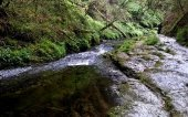 Lydford Gorge, a National Trust property near Wheatland Farm's Devon eco lodges