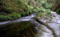 Lydford Gorge, a National Trust property near Wheatland Farm's Devon eco lodges