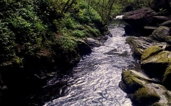 Looking down Lydford Gorge, a National Trust property near Wheatland Farm's Devon eco lodges