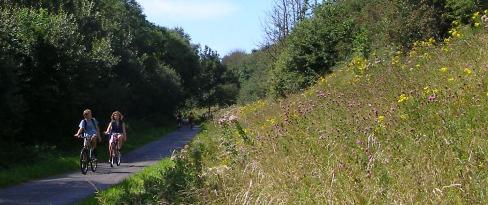 Tarka Trail between Fremington and Barnstaple