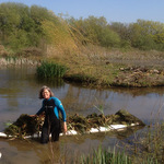 Pond management at Wheatland Farm Eco Lodges