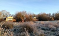The eco lodges at Wheatland Farm, Devon, on a frosty morning