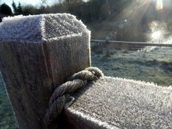 Frosty gate at Wheatland Farm's Devon Eco Lodges