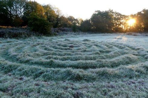 Frost on Wheatland Farm's labyrinth