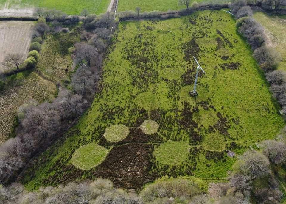 Aerial image of the turbine field at Wheatland Farm's Devon eco lodges, April 2021