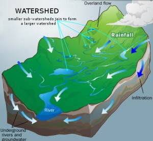 What is a Watershed | Wheatley River Improvement Group