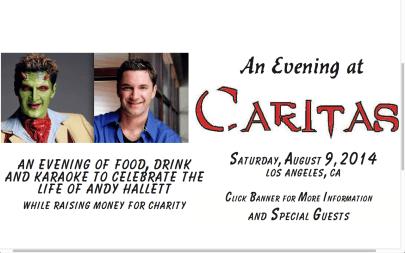 Caritas banner screen shot