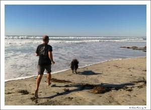 Beach, sun, water & doggie....perfection!