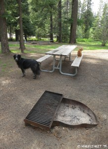 """View of """"sitting"""" area showing fire-pit and picnic table. This was our site A4."""