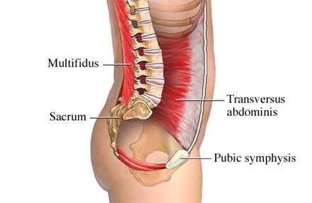Sunday Videos – Kneeling multidus activation