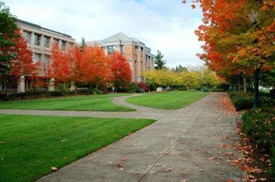 Eugene Car Donation Help Oregon Kids Get Tax Deduction