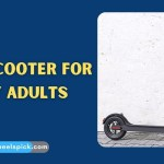 Best E Scooter for Heavy Adults