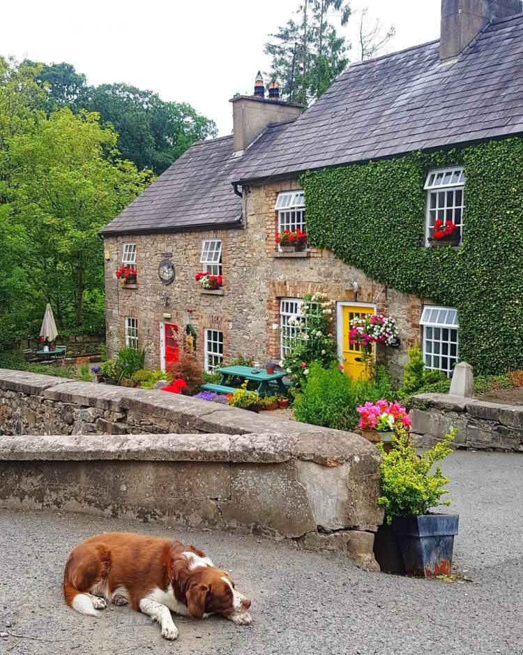 Things to do in Monaghan Ireland cottage