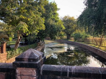 Things To Do In Jodhpur-3793