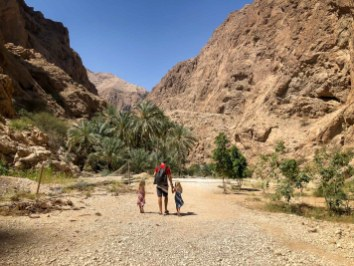 Wadis in Oman-5271