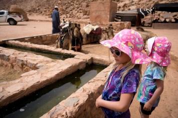 Wadi Rum-09713
