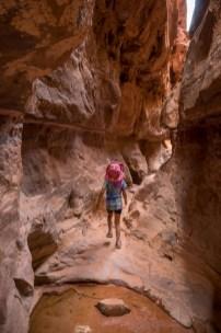 Wadi Rum-09791