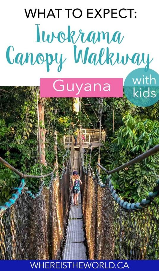 Iwokrama Canopy Walkway With Kids