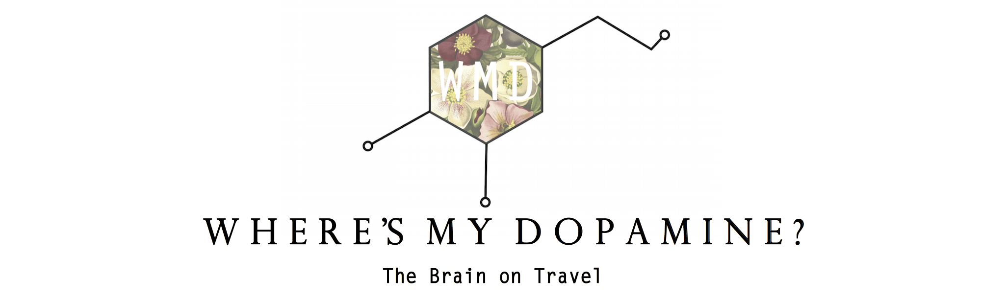 Where's my Dopamine?
