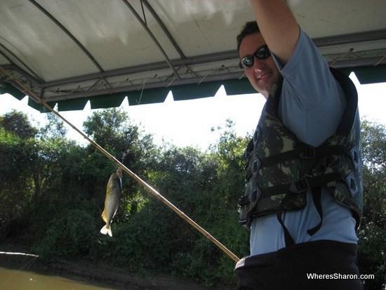 Pinranha fishing in the pantanal wetlands tour