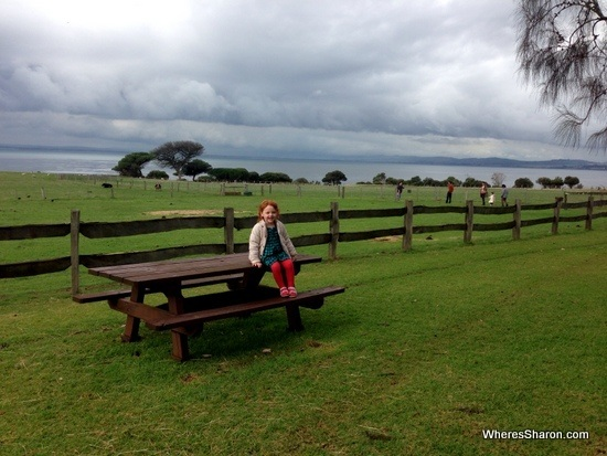 phillip island places to visit