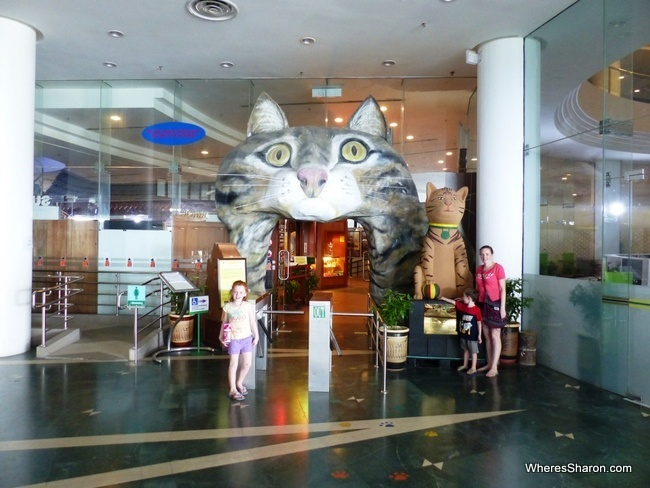 Cat Museum kuching to do